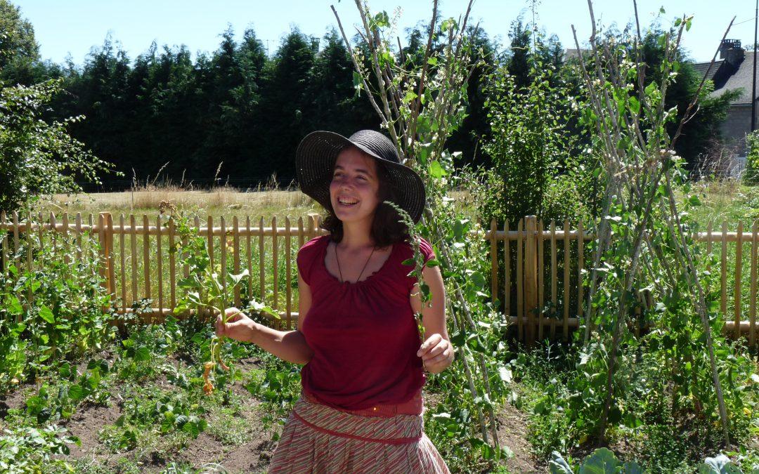 ANNULEE-Sortie terrain – Comment manger dans les bois ?
