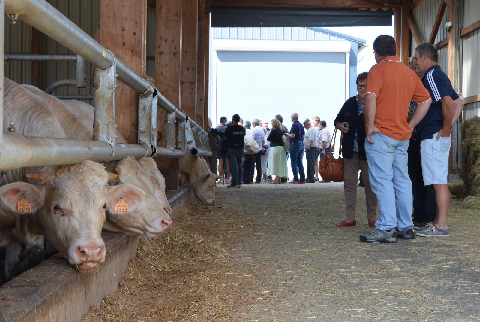 Journée porte ouverte à la ferme de Saint-Martial