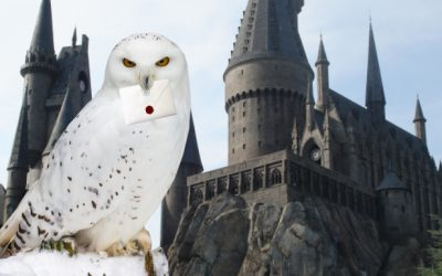 Joyeux Harryversaire !