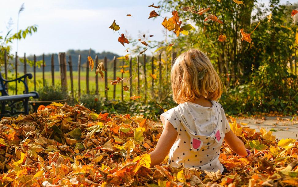 Enfant dans les feuilles d'automne