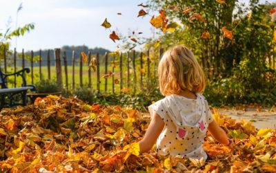 Vacances d'automne : un programme haut en couleurs